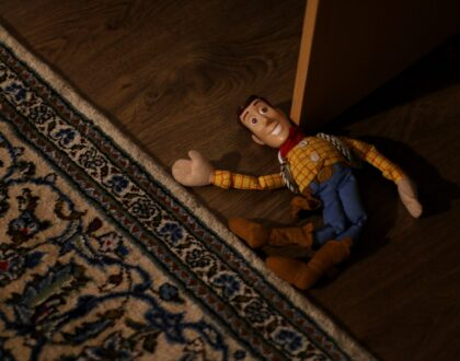 broken Woody toy; product liability insurance
